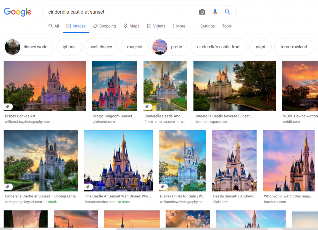 Two rows of Google image search results for Cinderella Castle at sunset.